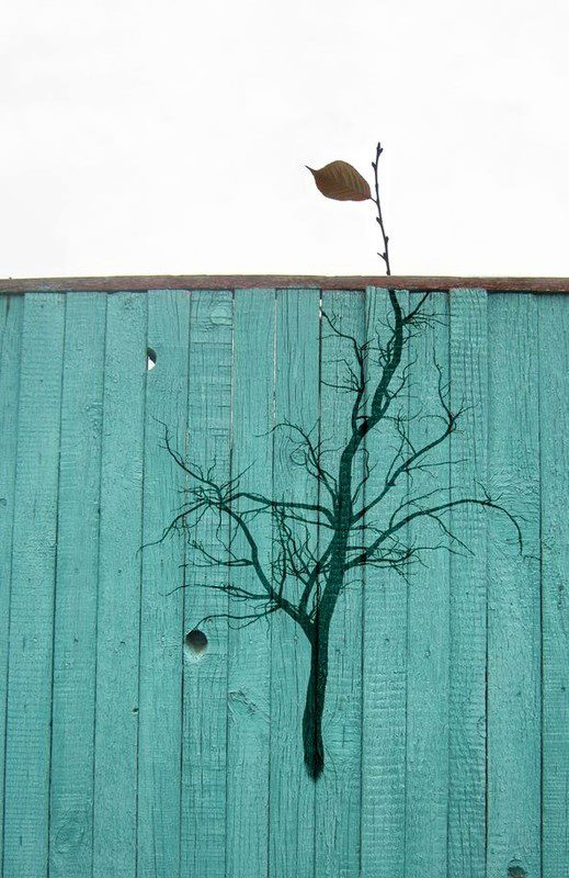Street Art Fusing with Nature (3)