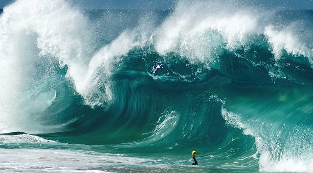 Shooting The Swells (by Photographer Clark Little) (2)