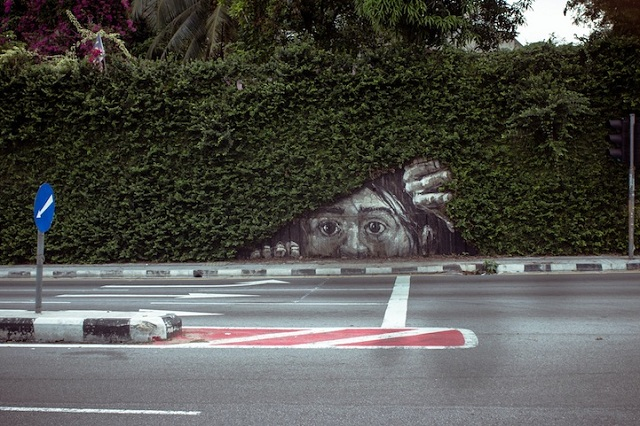 Street-Art-Fusing-with-Nature-8